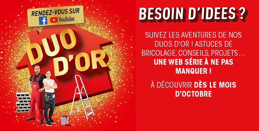 Brico Depot Besancon 25