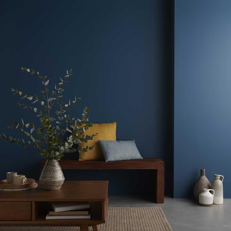 Peinture couleur murs et plafonds