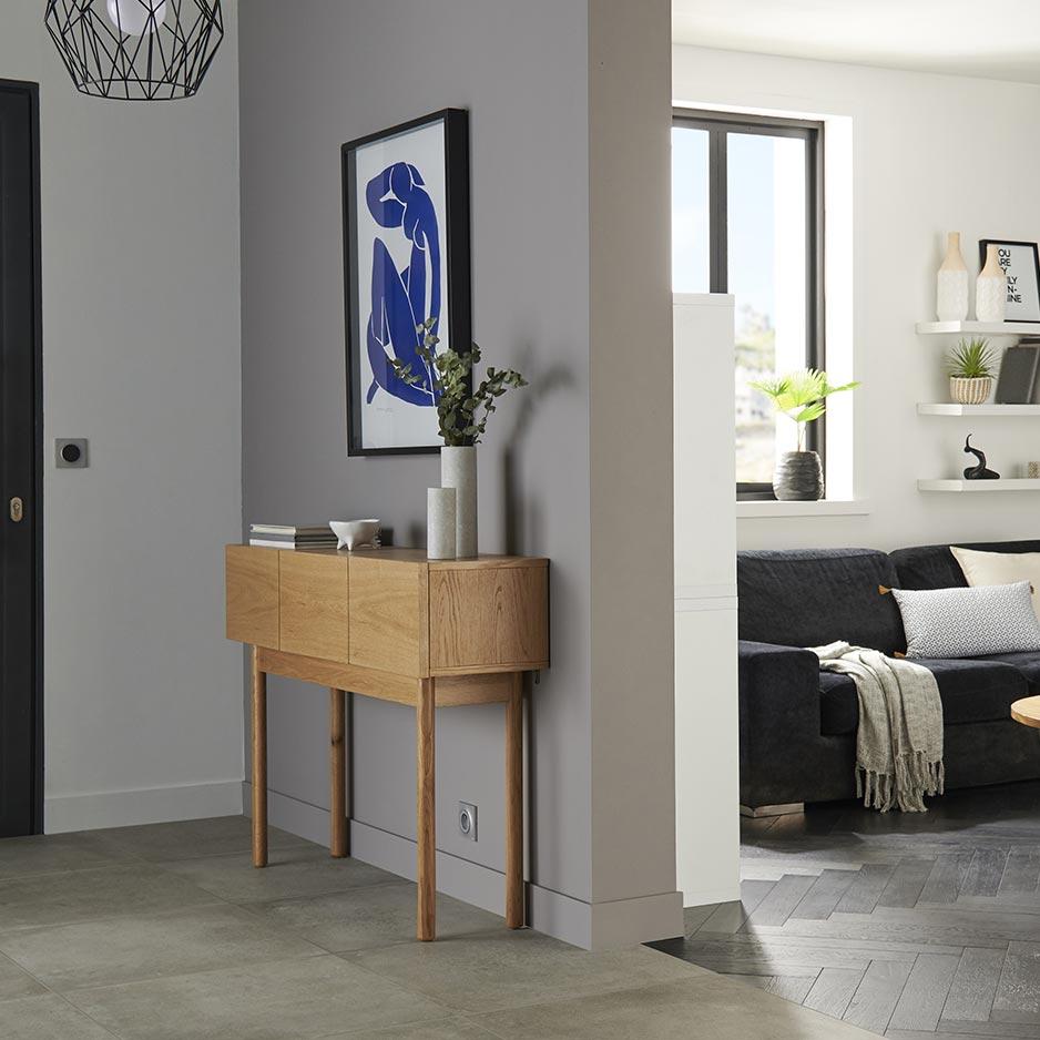 Salon et entrée style moderne