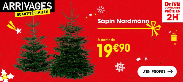 cadeau_noel_bricoleur_sapin