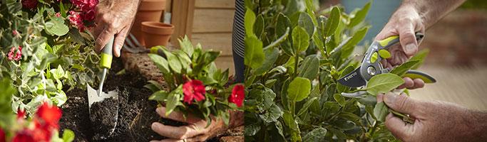 Outillage de jardin à main