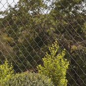 Grillage En Rouleau Panneau Rigide Aménagement Jardin