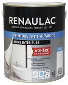 Peinture Anti Humidité Absorbeur Brico Dépôt