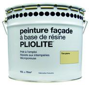 Crepi Peinture Facade Crepi Exterieur Maison Facade Brico Depot