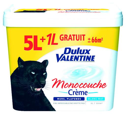 Peinture dulux valentine monocouche