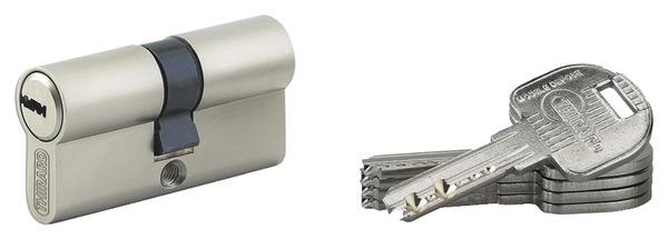Cylindre Haute Sûreté En Laiton Nickelé X Mm Brico Dépôt - Porte placard coulissante jumelé avec barillet porte blindée