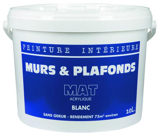 Peinture Blanche Acrylique Aspect Mat 10 L