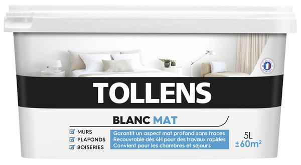 Peinture Murs Et Plafonds Bicouche Blanc Mat 5 L 5 L Mat Tollens