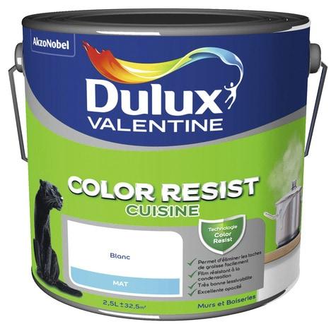 peinture cuisine color resist blanc mat 2 5 l 2 5 l