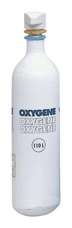 Recharge Oxygene 500l Brico Depot
