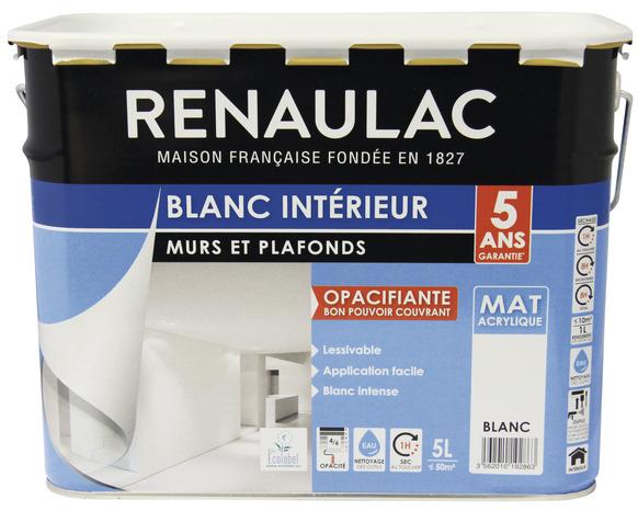 Peinture Pour Murs Et Plafonds Blanc Intense 5 L Renaulac
