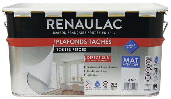 Peinture Acrylique Blanc Mat Idale Pour Recouvrir Les Tches Des