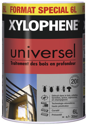 xylophene brico depot resine de protection pour peinture. Black Bedroom Furniture Sets. Home Design Ideas