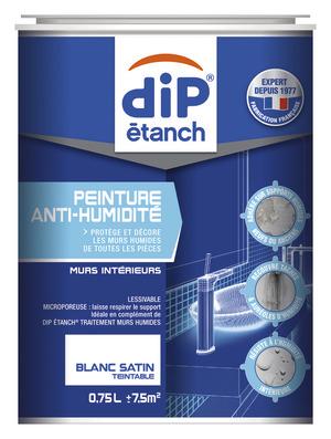 peinture anti humidit 233 absorbeur brico d 233 p 244 t